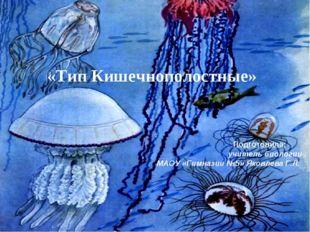 «Тип Кишечнополостные» Подготовила: учитель биологии МАОУ «Гимназии №5» Яковл