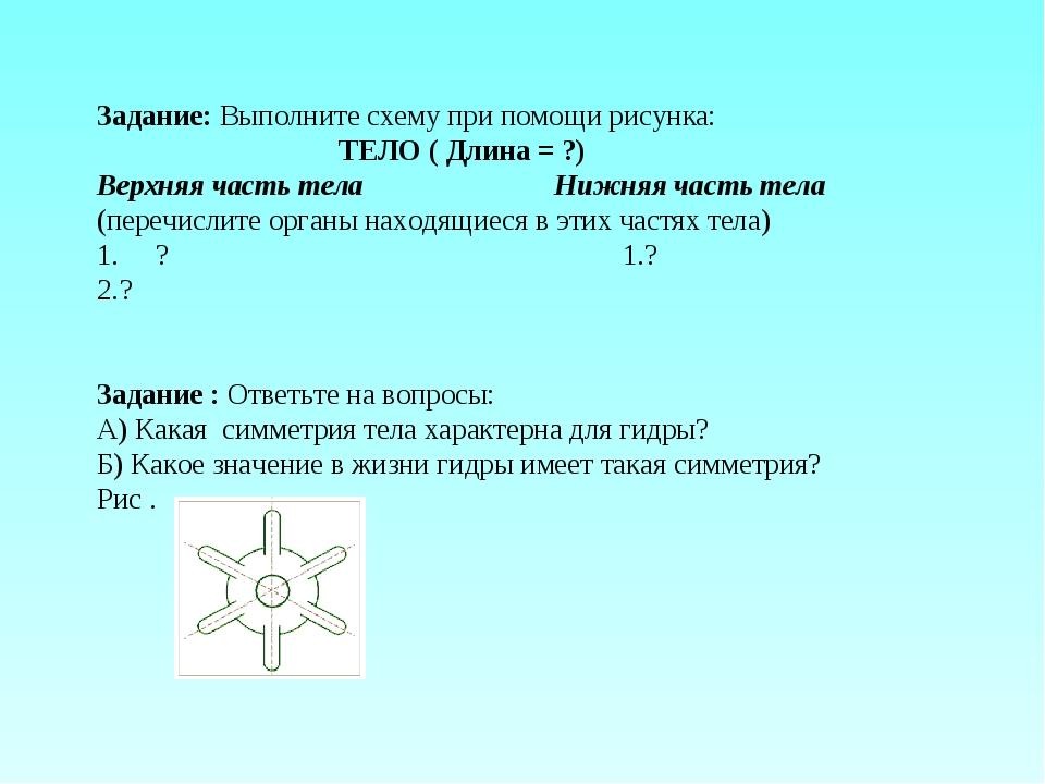 Задание: Выполните схему при помощи рисунка: ТЕЛО ( Длина = ?) Верхняя часть...