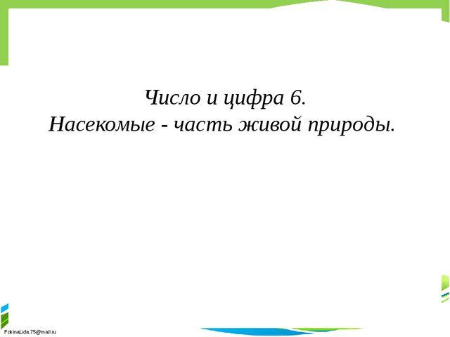 Число и цифра 6. Насекомые - часть живой природы. FokinaLida.75@mail.ru