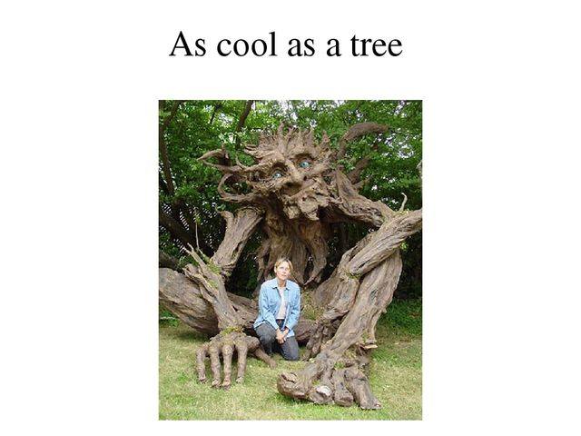 As cool as a tree