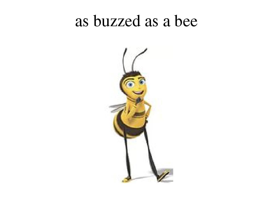 as buzzed as a bee