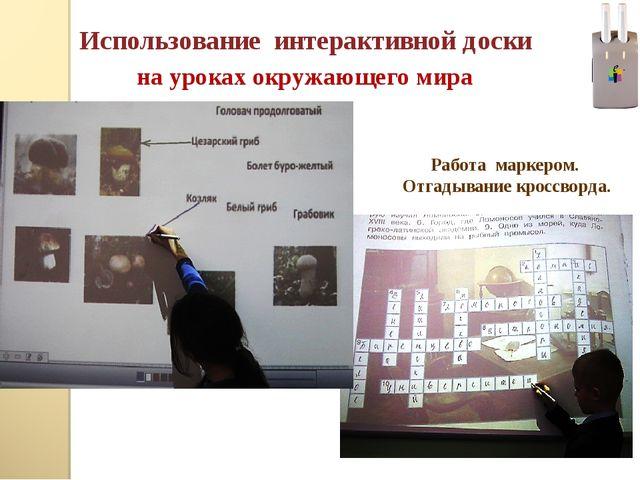 Использование интерактивной доски на уроках окружающего мира Работа маркером....