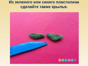 Из зеленого или синего пластилина сделайте также крылья.