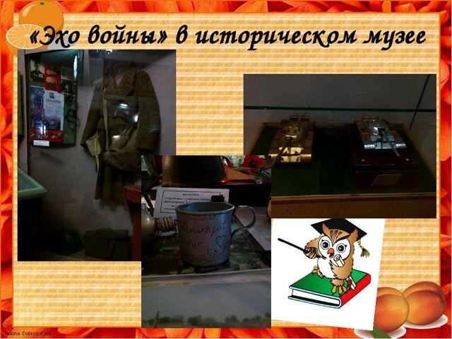 «Эхо войны» в историческом музее