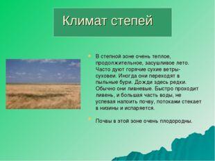Климат степей В степной зоне очень теплое, продолжительное, засушливое лето.