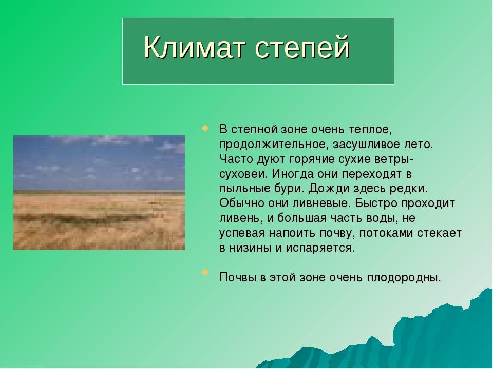 Климат степей В степной зоне очень теплое, продолжительное, засушливое лето....