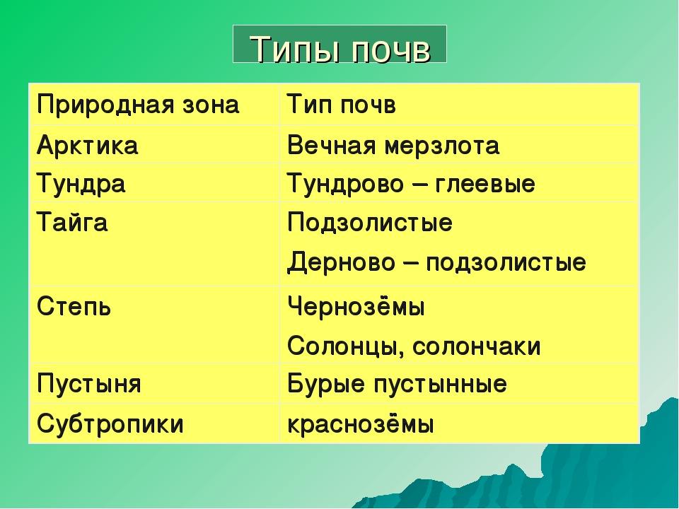 Типы почв Природная зонаТип почв АрктикаВечная мерзлота ТундраТундрово – г...
