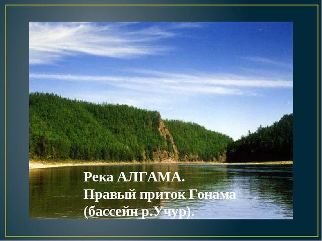 Река АЛГАМА. Правый приток Гонама (бассейн р.Учур).