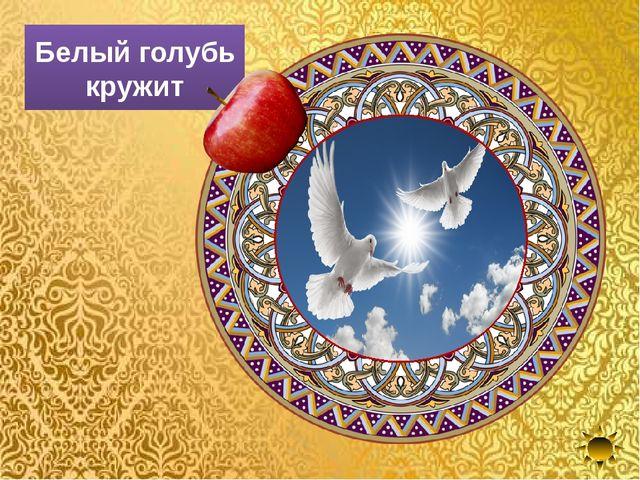 Белый голубь кружит