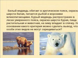 Биологическая задача № 2: Белый медведь обитает в арктическом поясе, окраска