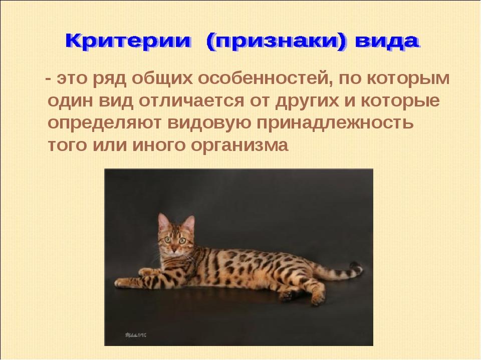 - это ряд общих особенностей, по которым один вид отличается от других и кот...