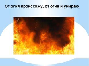 От огня происхожу, от огня и умираю