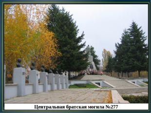 Центральная братская могила №277