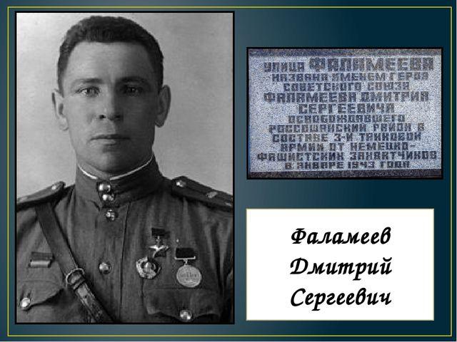 Фаламеев Дмитрий Сергеевич