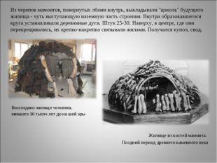"""Из черепов мамонтов, повернутых лбами внутрь, выкладывали """"цоколь"""" будущего"""