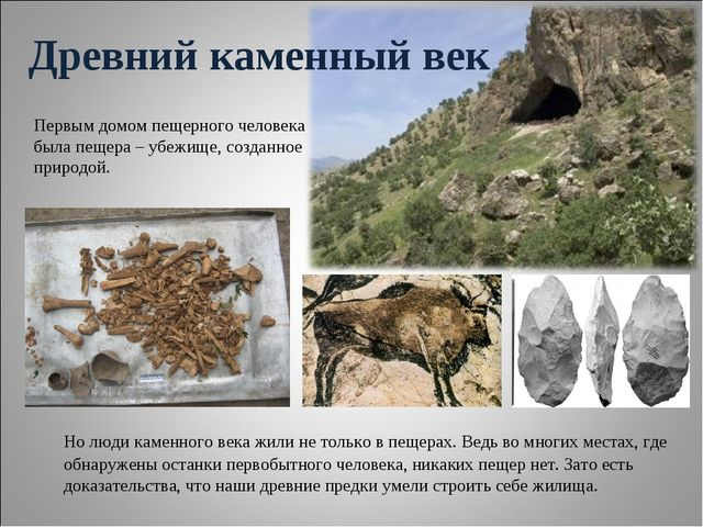 Древний каменный век Первым домом пещерного человека была пещера – убежище,...