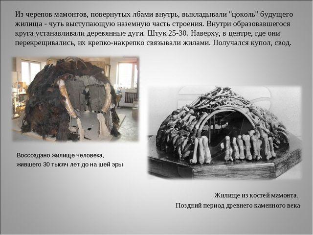 """Из черепов мамонтов, повернутых лбами внутрь, выкладывали """"цоколь"""" будущего..."""