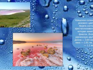 Кояшское соленое озеро, розового цвета. Его берега состоят из кристаллизован