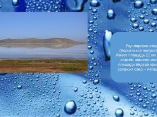Узунларское озеро (Керченский полуостров). Имеет площадь 21 км кв., что сов