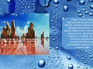 Озеро Сасык-сиваш. Крупнейшее соленое озеро в Крыму, которое находится между