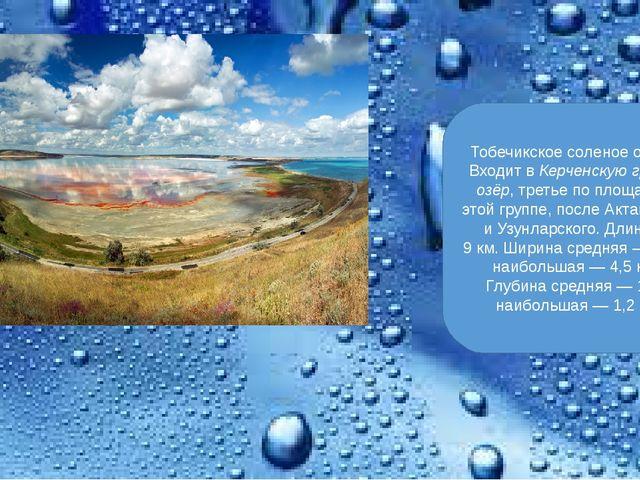 Тобечикское соленое озеро. Входит вКерченскую группу озёр, третье по площади...