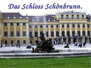 Das Schloss Schönbrunn.