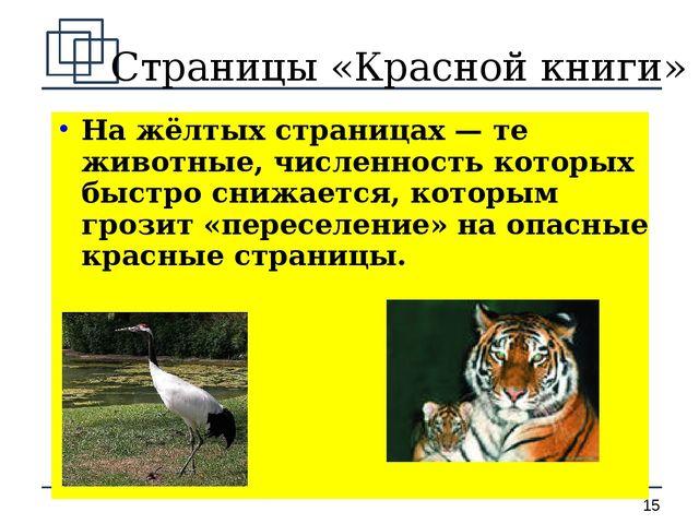 Страницы «Красной книги» На жёлтых страницах — те животные, численность котор...