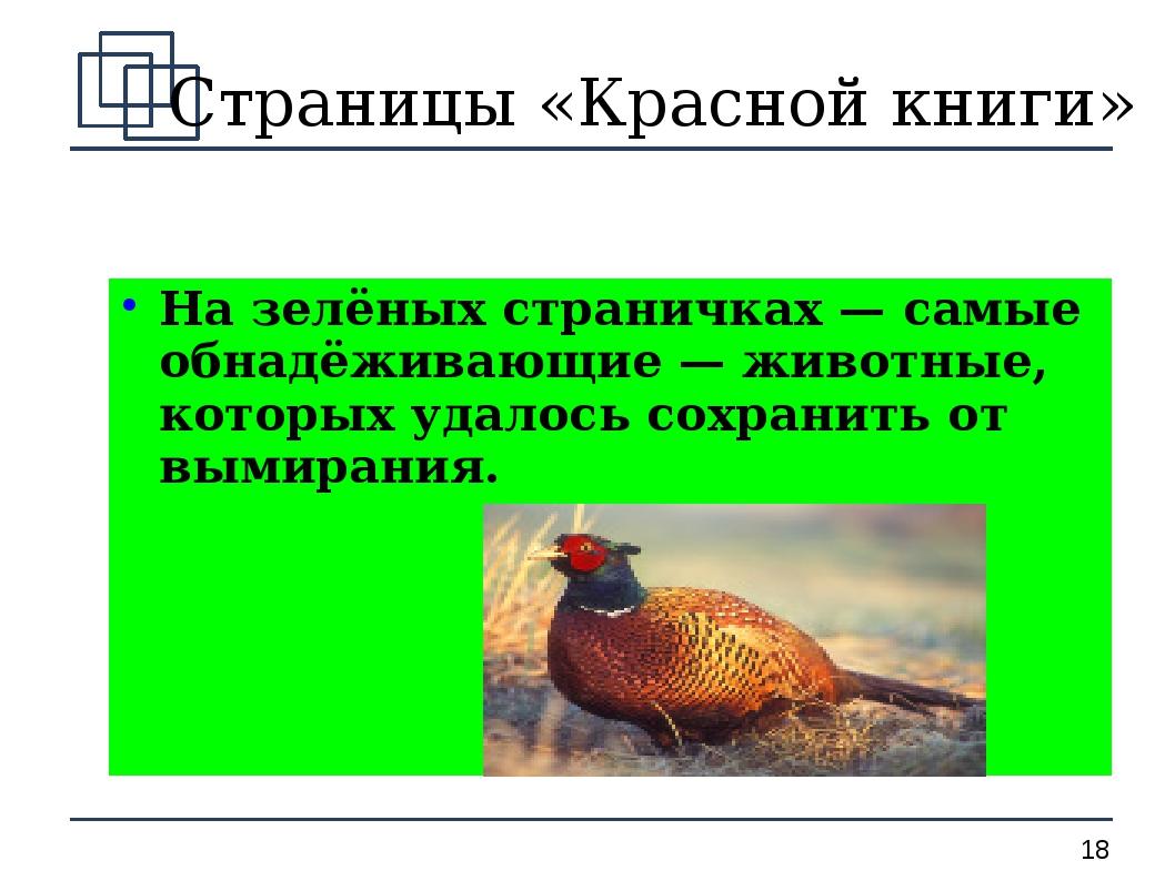 Страницы «Красной книги» На зелёных страничках — самые обнадёживающие — живот...