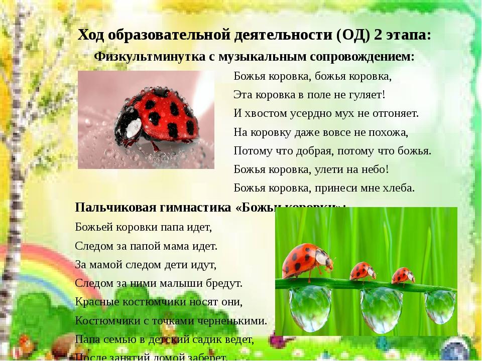 Конспект урока рисование с натуры и памяти жук