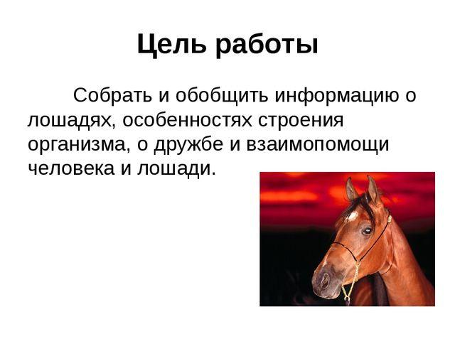 Цель работы Собрать и обобщить информацию о лошадях, особенностях строения о...