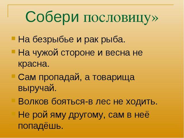 Собери пословицу» На безрыбье и рак рыба. На чужой стороне и весна не красна....