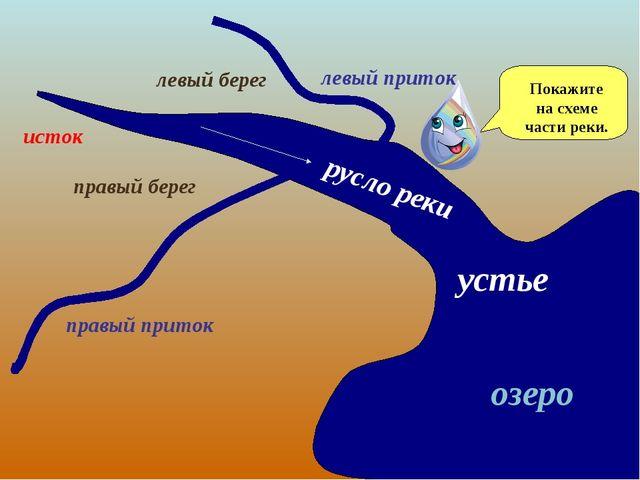 устье озеро правый берег левый берег русло реки исток правый приток левый при...