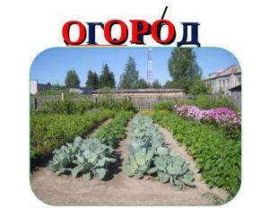 . Г . РОД О О ОРО