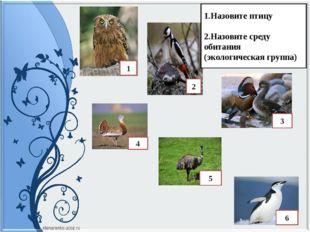 1.Назовите птицу 2.Назовите среду обитания (экологическая группа) 1 2 3 4 5 6