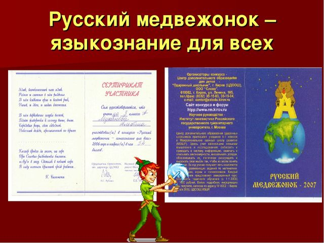 Русский медвежонок – языкознание для всех