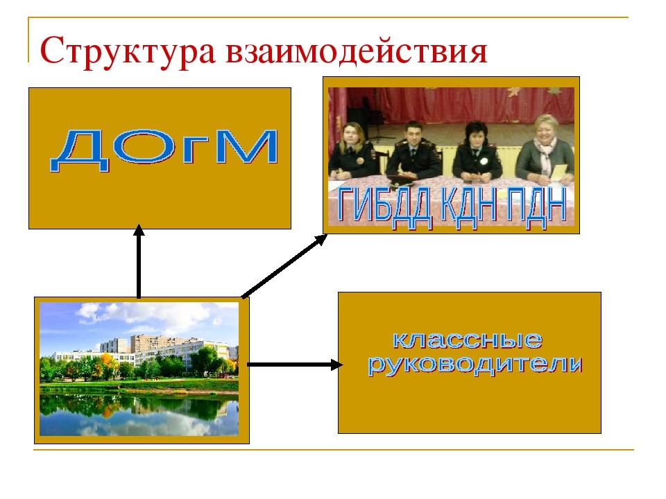 Структура взаимодействия