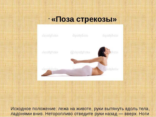 «Поза стрекозы» Исходное положение: лежа на животе, руки вытянуть вдоль тела,...