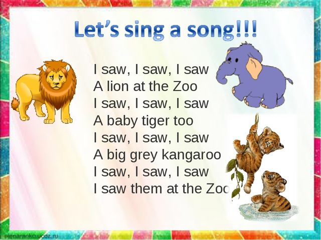 I saw, I saw, I saw A lion at the Zoo I saw, I saw, I saw A baby tiger too I...