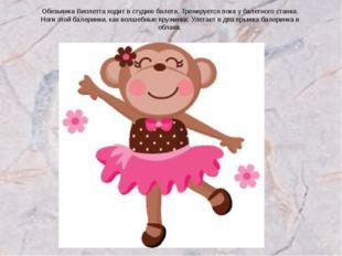Обезьянка Виолетта ходит в студию балета. Тренируется пока у балетного станка