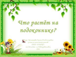 Что растёт на подоконнике? Автор : Кочеткова Оксана Владимировна, учитель нач