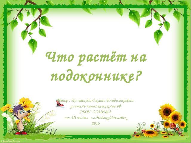 Что растёт на подоконнике? Автор : Кочеткова Оксана Владимировна, учитель нач...