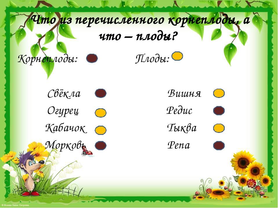 Что из перечисленного корнеплоды, а что – плоды? Корнеплоды: Плоды: Свёкла Ви...