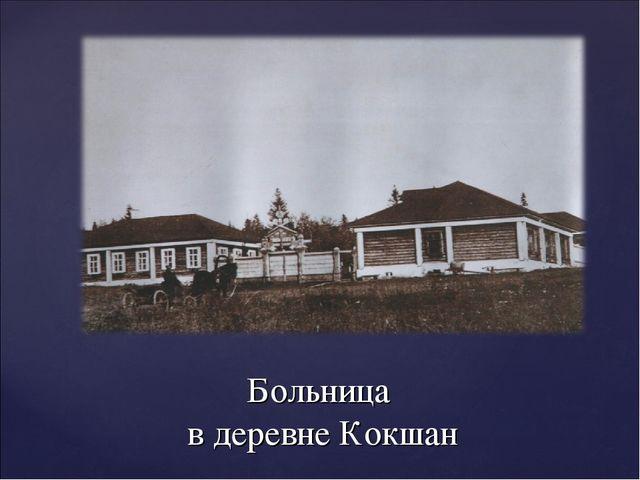Больница в деревне Кокшан
