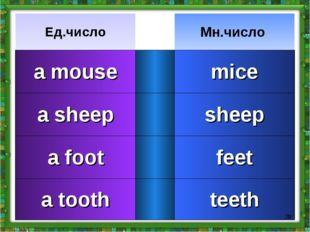 * Ед.числоМн.число a mousemice a sheepsheep a footfeet a toothteeth