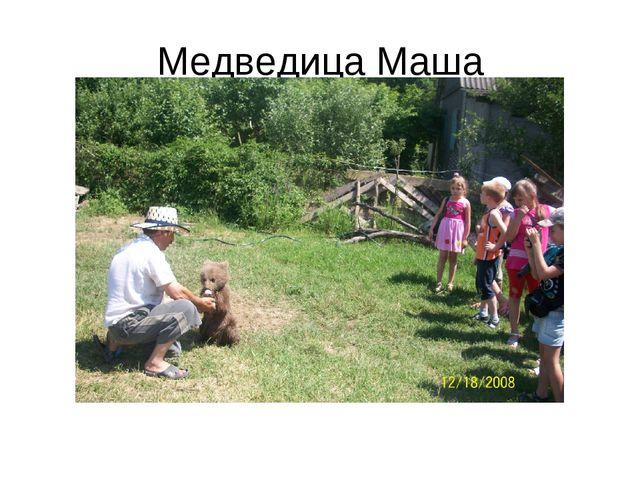 Медведица Маша