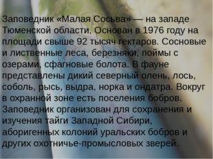 Заповедник «Малая Сосьва» — на западе Тюменской области. Основан в 1976 году