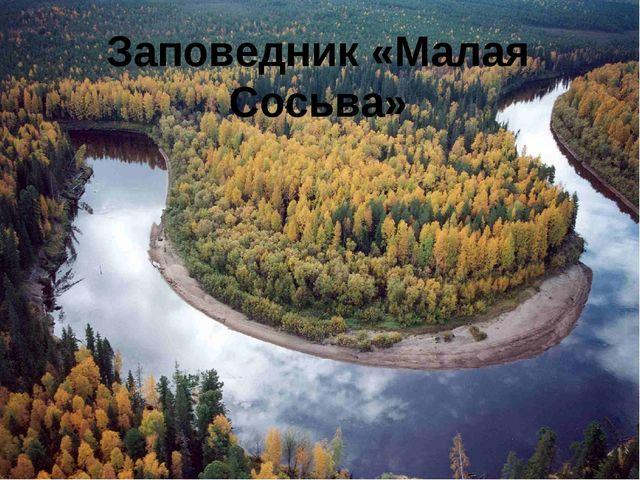 Заповедник «Малая Сосьва»