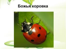 hello_html_a216126.jpg