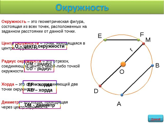 Окружность – это геометрическая фигура, состоящая из всех точек, расположенны...