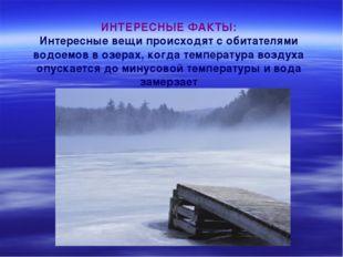 ИНТЕРЕСНЫЕ ФАКТЫ: Интересные вещи происходят с обитателями водоемов в озерах,